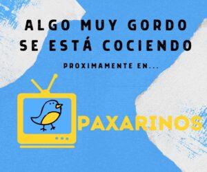 Hola Paxarinos, la primera tele en directo de aves